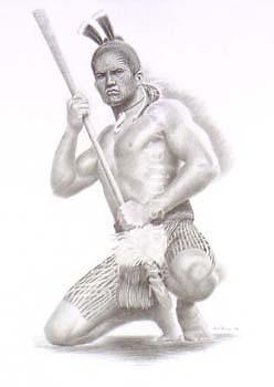 discover me prints nz toa maori warrior by douglas