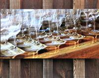 Wine Glass Photography 60x30cm
