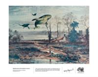 Migration Path of the Humpback whale in Autumn - Print
