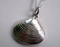 Pipi Shell Pendant - Sterling silver