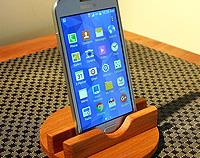 iphone/smartphone New Zealand swamp kauri stand.