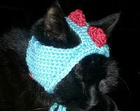 Cute Cat Dinosaur Hat