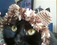 Crochet Cat Lion Hat