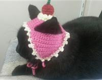 Crochet Cat Dessert Hat