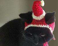 Crochet Santa Claus Hat for Cats