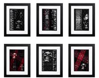 Skull Collection - 6 x Signed Prints