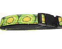 Kiwifruit Fabric Dog Collar