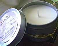 Travel Tins Soy Candles